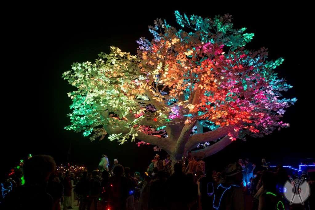 festival art et lumiere Burning Man rencontre artistique dj musique electronique